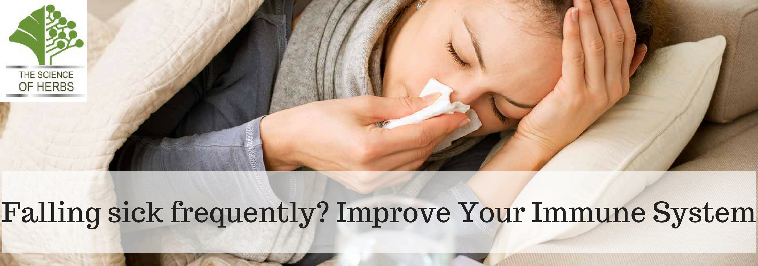 How to Protect Your Immune System